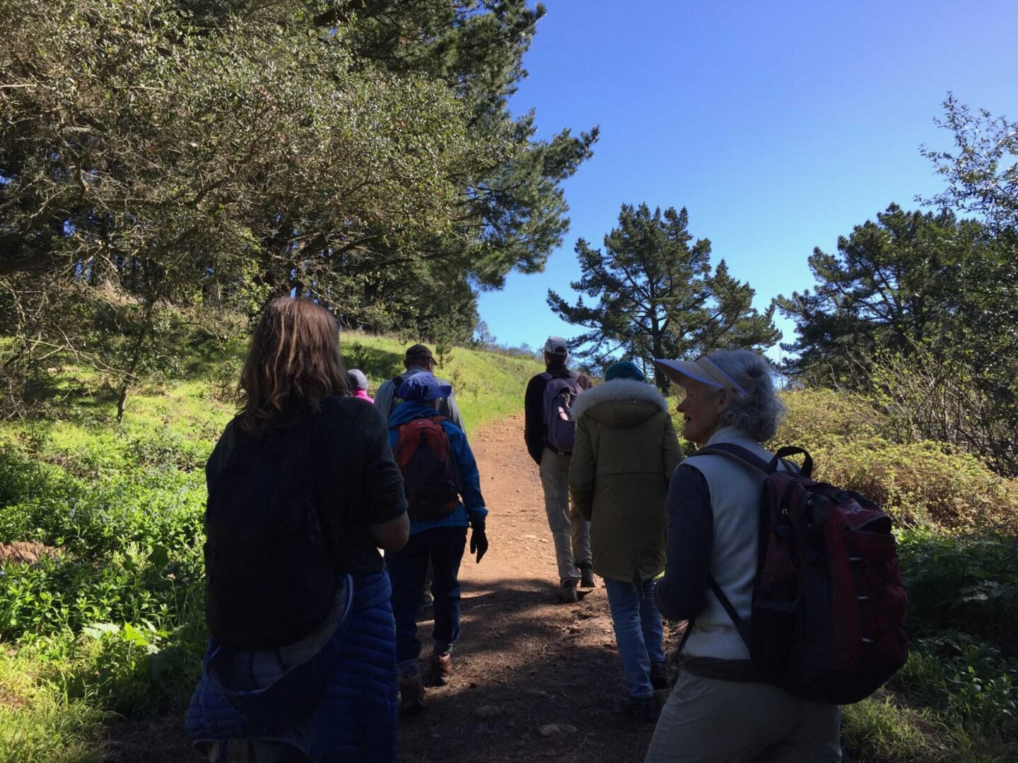 TSCG team retreat - hiking in Tilden Regional Park, Orinda, California